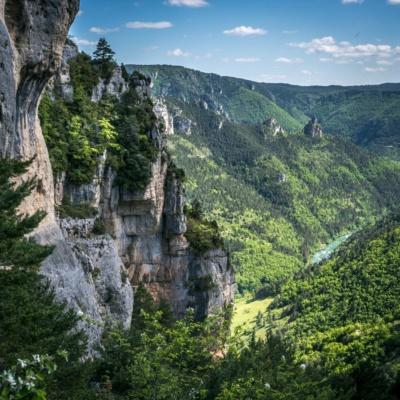 Le Tarn descend vers Le Rozier (ph. E. Trannois)