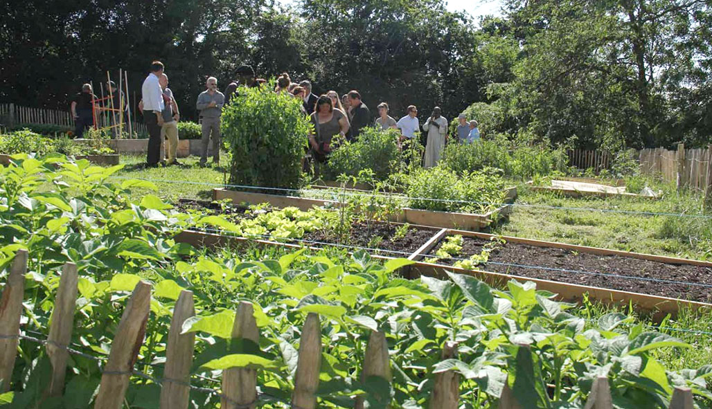 Vers la création d'un jardin partagé