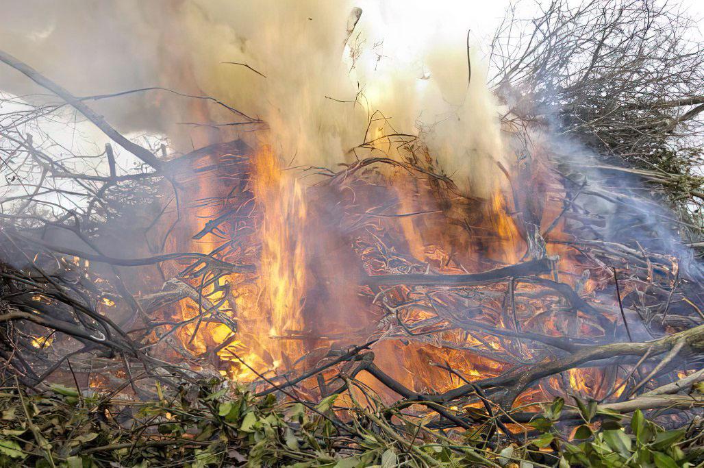Les règles à respecter pour le brûlage des déchets